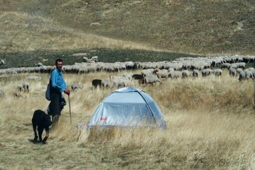 L'écovolontaire Yacine, en direct sur le terrain (août).