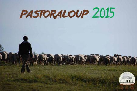 pastoraloup 2014 appel benevoles