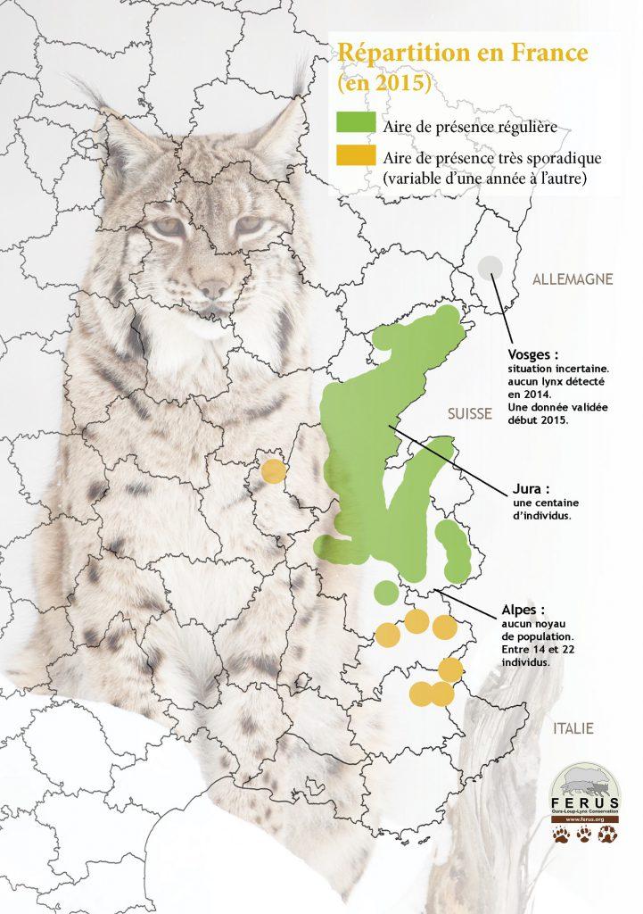 carte lynx France