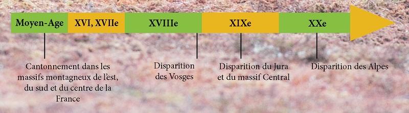 disparition ours France