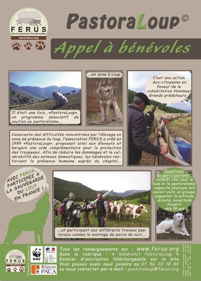 http://www.ferus.fr/wp-content/uploads/2013/03/pastoraloup-2014-appel-benevoles.jpg