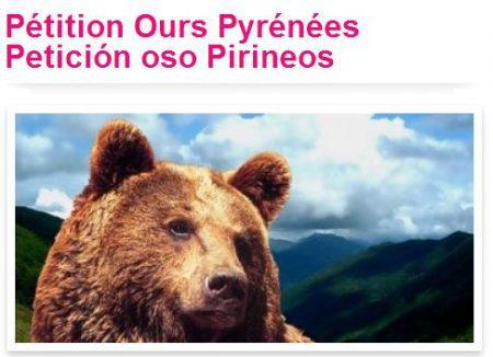 pétition-ours-pyrénées