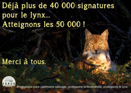 lynx petition 50000