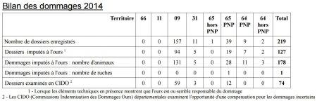 bilan dommages ours 2014