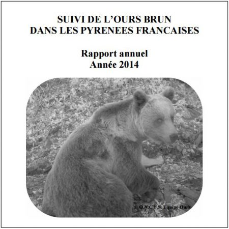 rapport ours 2014