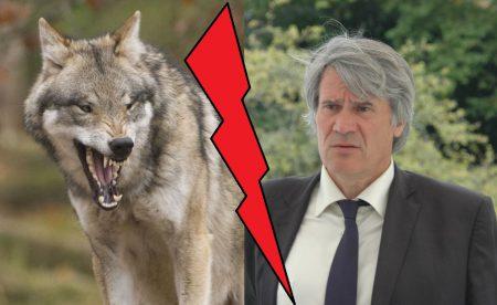 loup-lefoll