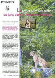 projet lynx palatinat