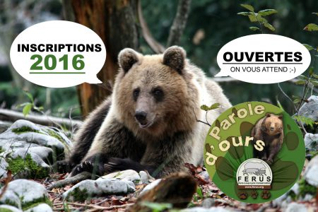 Parole d'ours 2016 inscriptions