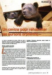 oursons-russie-gazette59